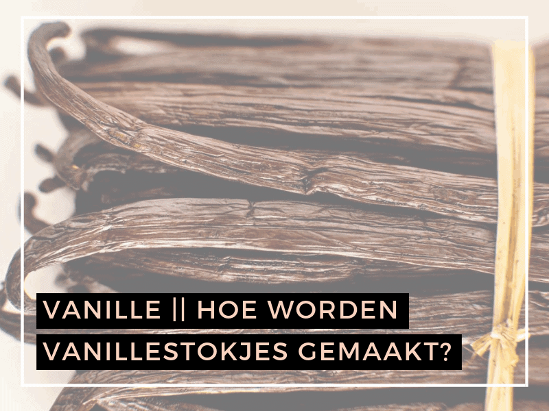 Vanille | Hoe worden vanillestokjes gemaakt?